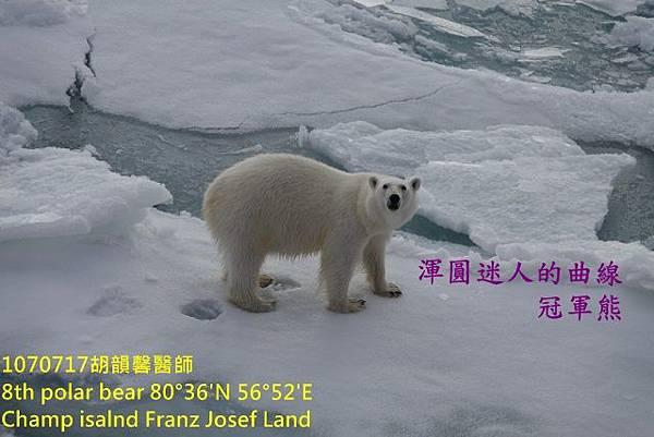 1070717 Champ island Franz Josef landDSC07557 (640x427).jpg