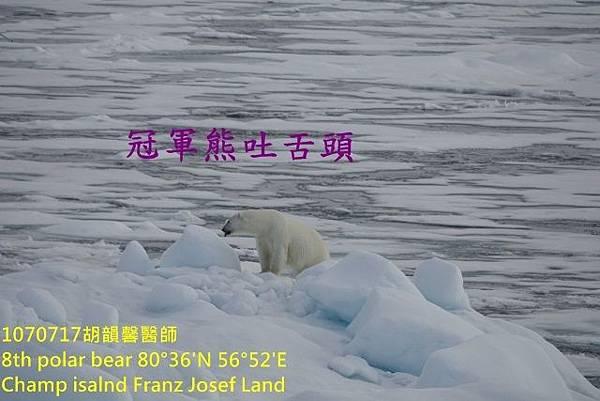 1070717 Champ island Franz Josef landDSC07421 (640x427).jpg