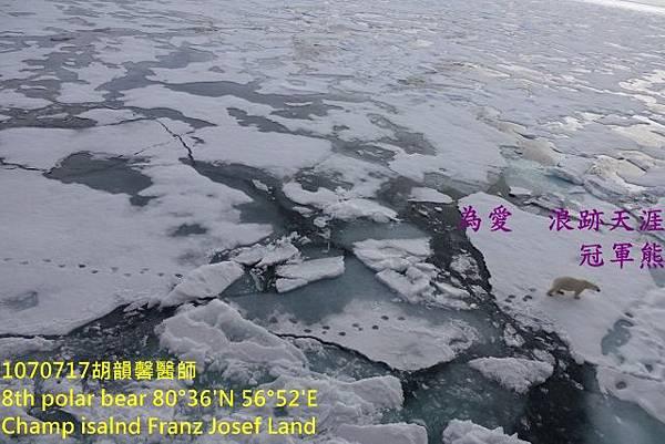 1070717 Champ island Franz Josef landDSC07548 (640x427).jpg