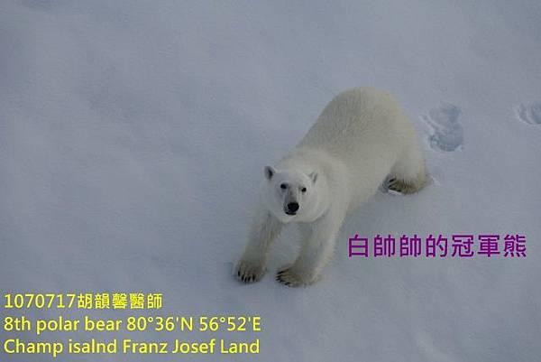 1070717 Champ island Franz Josef landDSC07468 (640x427).jpg