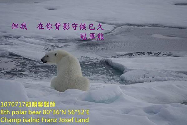 1070717 Champ island Franz Josef landDSC07568 (640x427).jpg