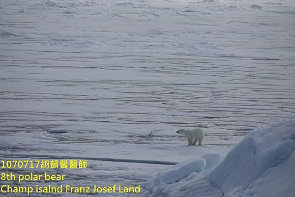 1070717 Champ island Franz Josef landDSC07664 (640x427).jpg
