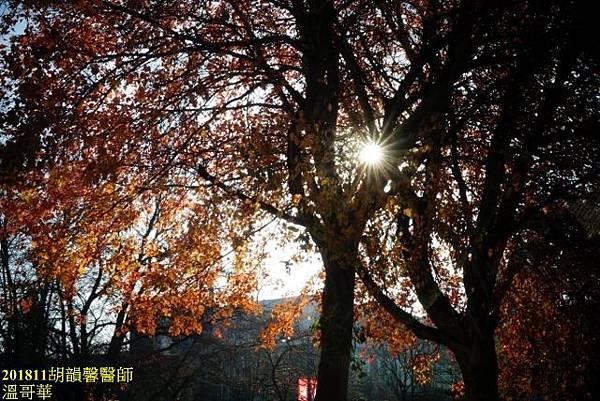 201811溫哥華DSC03501 (640x427).jpg