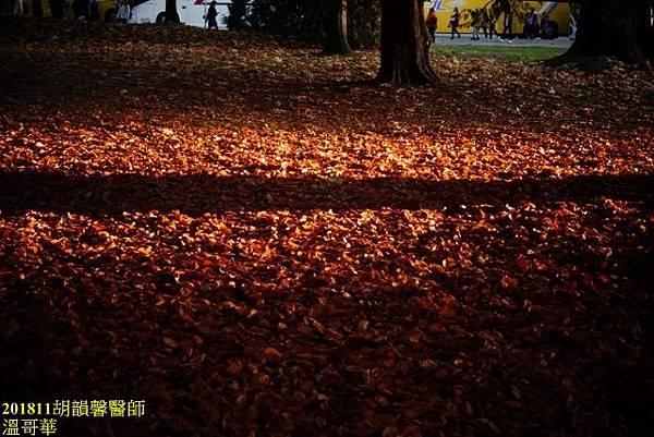 201811溫哥華DSC04027 (640x427).jpg