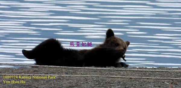 108 Bear108 Bear6 (640x311).jpg