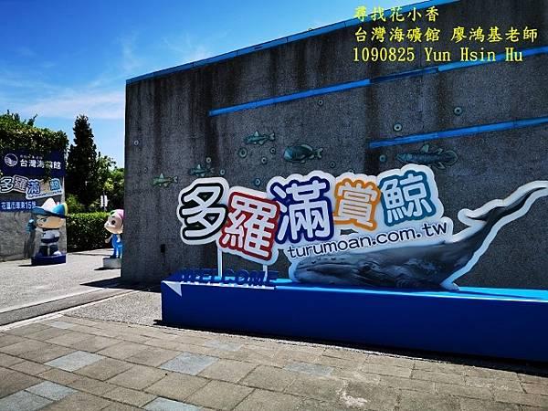 1090825多羅滿賞鯨IMG_20200825_121706 (640x480).jpg