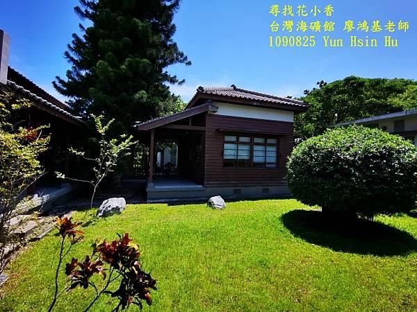 1090825多羅滿賞鯨IMG_20200825_122208 (640x480).jpg