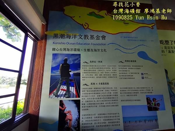 1090825多羅滿賞鯨IMG_20200825_122152 (640x480).jpg