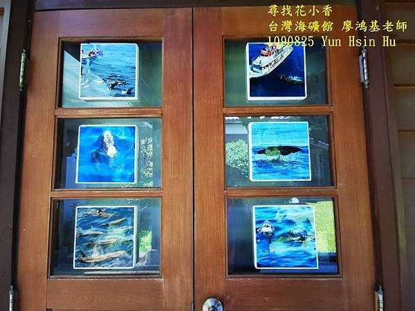 1090825多羅滿賞鯨IMG_20200825_122402 (640x480).jpg