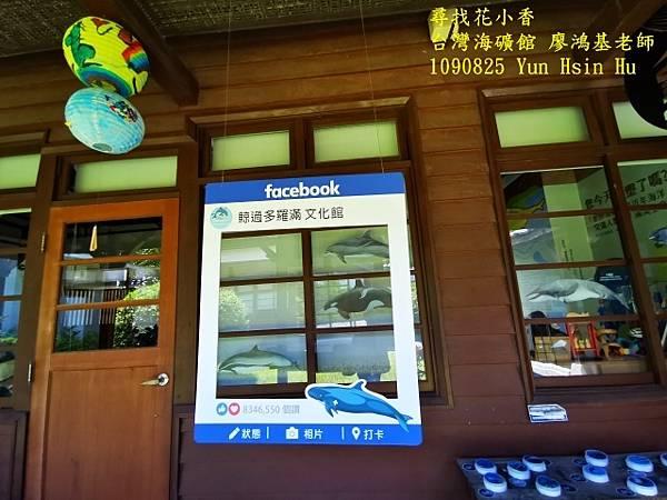 1090825多羅滿賞鯨IMG_20200825_122213 (640x480).jpg