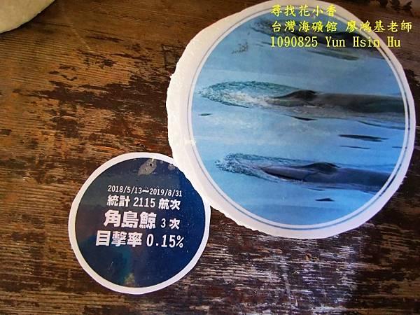 1090825多羅滿賞鯨IMG_20200825_122434 (640x480).jpg