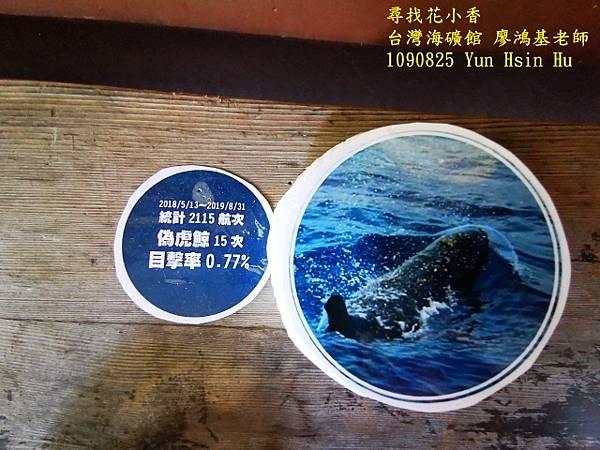 1090825多羅滿賞鯨IMG_20200825_122437 (640x480).jpg