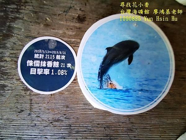 1090825多羅滿賞鯨IMG_20200825_122439 (640x480).jpg