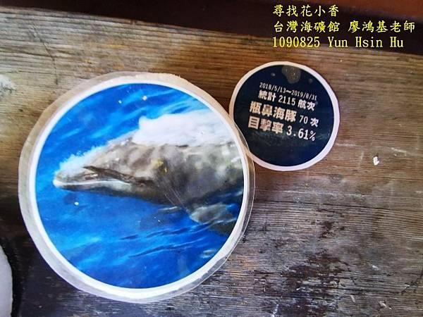 1090825多羅滿賞鯨IMG_20200825_122452 (640x480).jpg