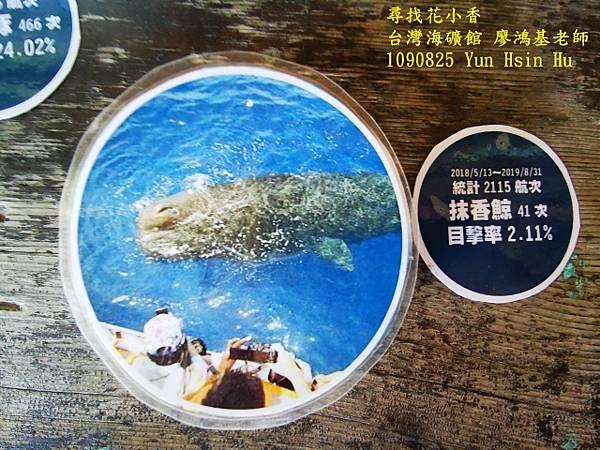 1090825多羅滿賞鯨IMG_20200825_122449 (640x480).jpg