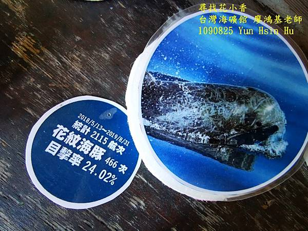 1090825多羅滿賞鯨IMG_20200825_122455 (640x480).jpg