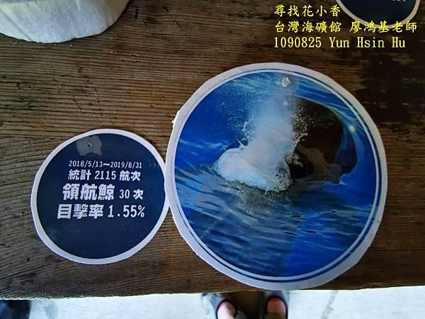1090825多羅滿賞鯨IMG_20200825_122445 (640x480).jpg