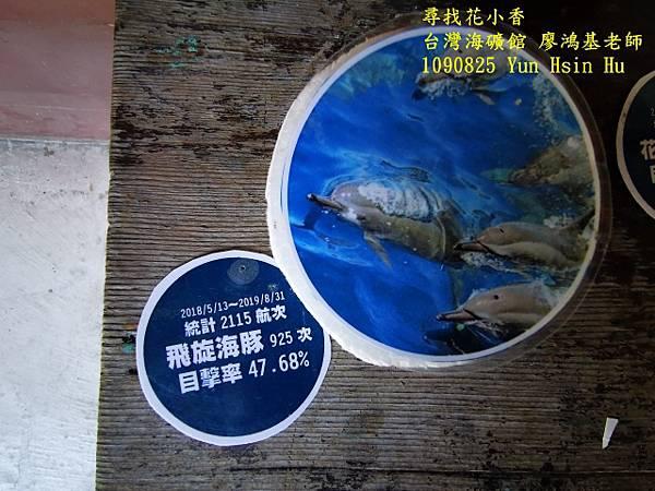 1090825多羅滿賞鯨IMG_20200825_122501 (640x480).jpg