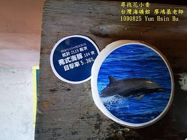1090825多羅滿賞鯨IMG_20200825_122458 (640x480).jpg