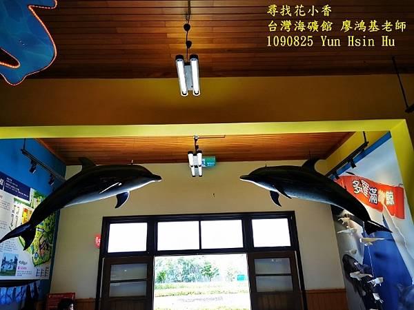 1090825多羅滿賞鯨IMG_20200825_122912 (640x480).jpg