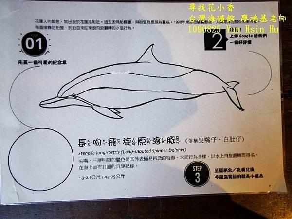 1090825多羅滿賞鯨IMG_20200825_123017 (640x480).jpg
