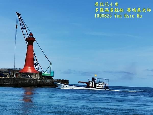1090825多羅滿賞鯨IMG_20200825_131638 (640x480).jpg