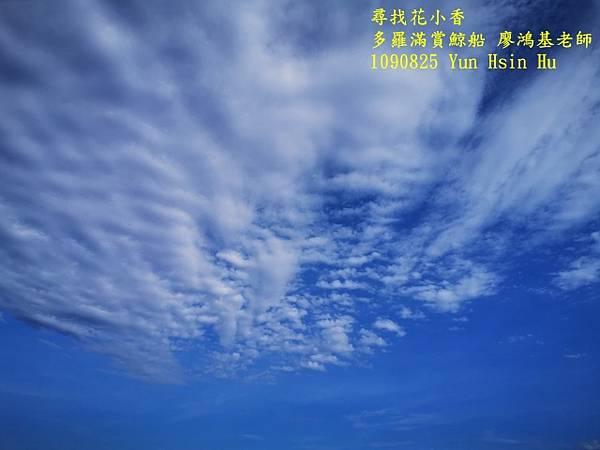 1090825多羅滿賞鯨IMG_20200825_160654 (640x480).jpg