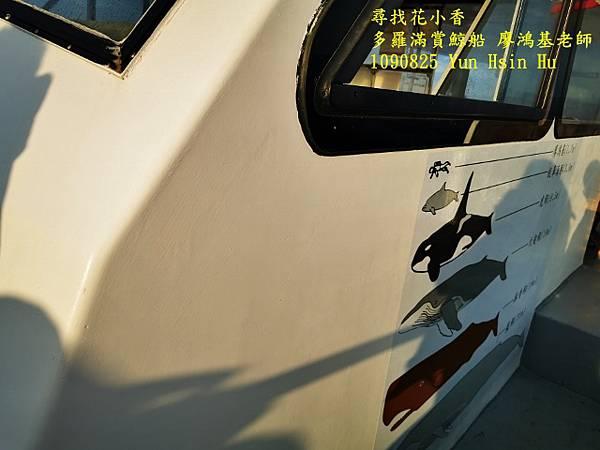 1090825多羅滿賞鯨IMG_20200825_172834 (640x480).jpg