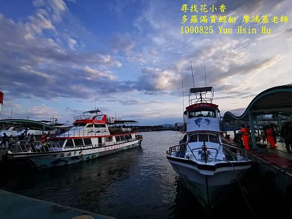 1090825多羅滿賞鯨IMG_20200825_175441 (640x480).jpg