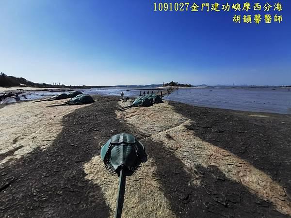 1091027金門IMG_20201027_132029 (640x480).jpg