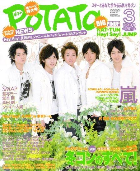 POTATO-2008-3