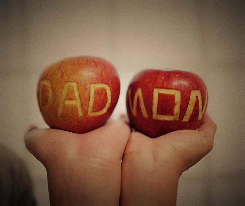 MOM&DADNew