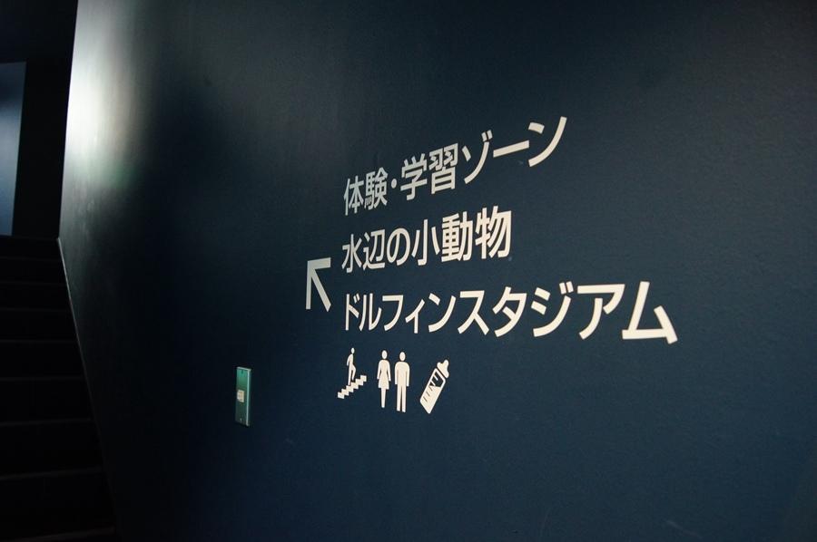 DSC08078.jpg