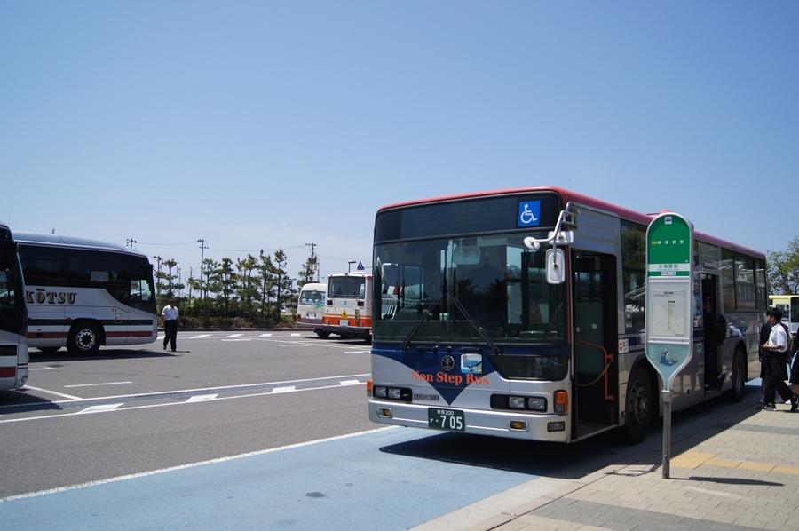 DSC08271.jpg