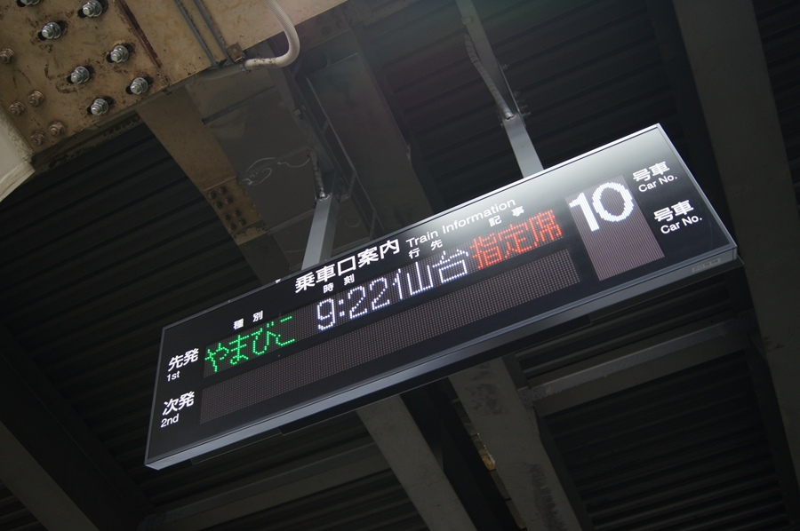 DSC08407.jpg