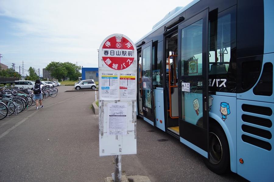 DSC08809.jpg