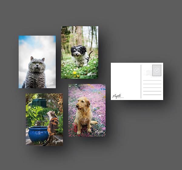 0813-Postcard-01.jpg