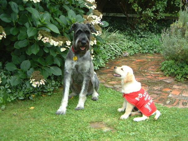 Quinn&Kyla 013.jpg