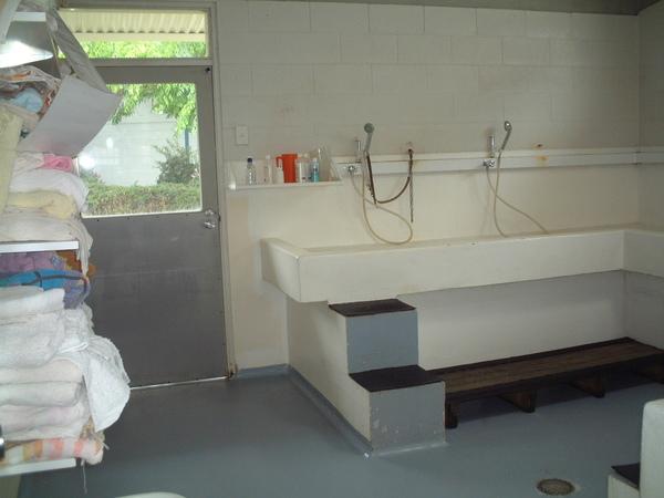 犬舍洗澡處.JPG
