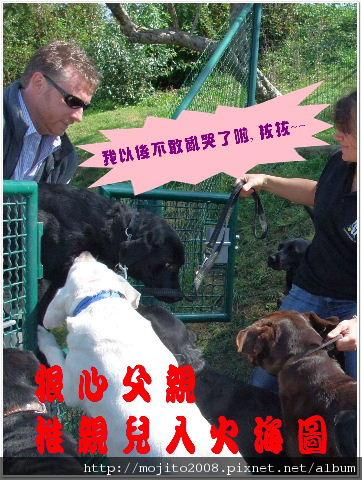 2009_0907 Chienguide (95).JPG