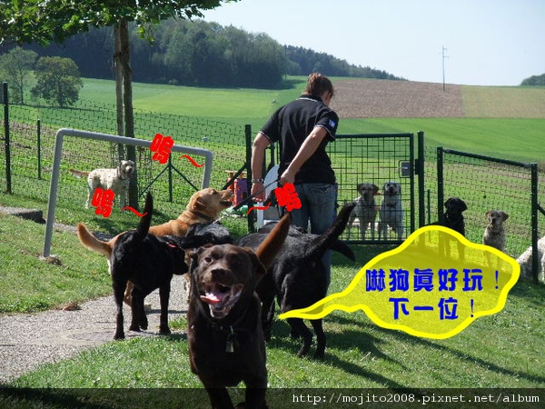 2009_0907 Chienguide (98).JPG