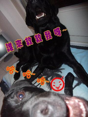 2009_1001home0048.JPG