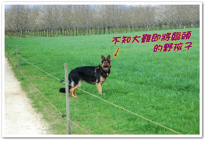 2010_0412NB0028.JPG