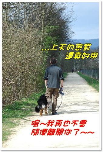 2010_0412NB0036.JPG