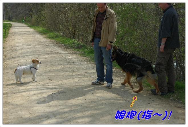 2010_0412NB0066.JPG