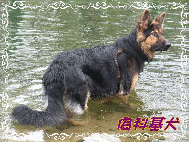 2010_0417NB0087.JPG