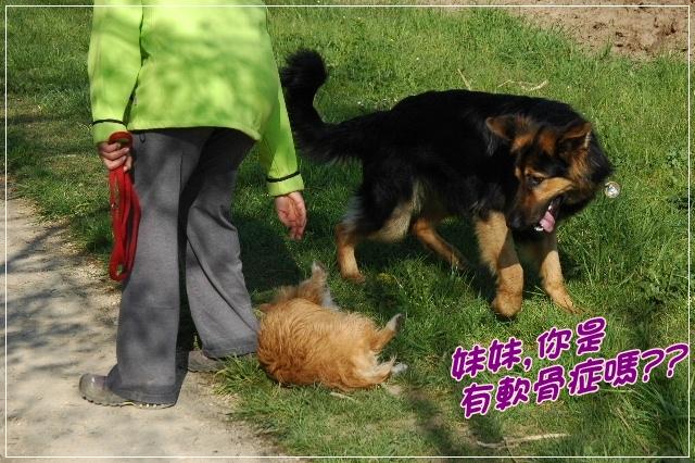 2010_0425NB0050.JPG