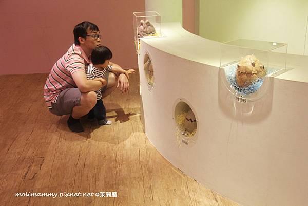 兒童美術館6_13.jpg