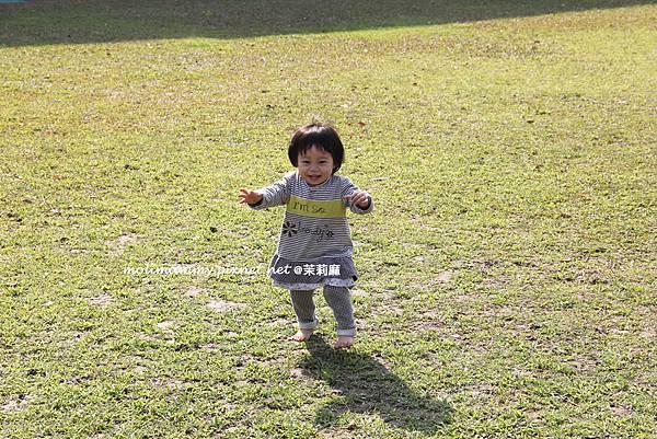 littlegarden3_4.jpg