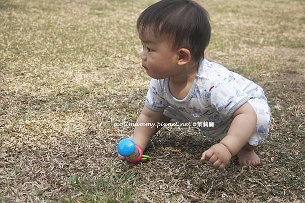 BabyOrganics4_5.jpg